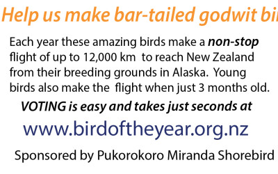 Bird of the Year Flyer I