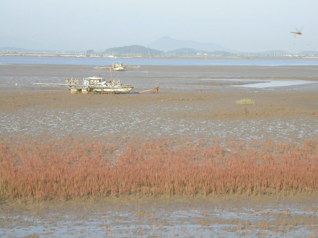 RS_Inner Dongjin Low Tide August 2004